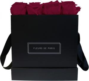 Infinity Collection Velvet Plum Large black - square