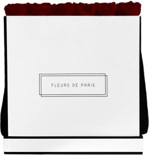 Infinity Collection Burgundy Luxe white - square