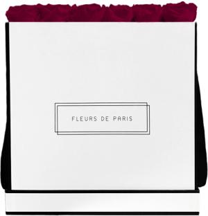 Infinity Collection Latin Cherry Luxe white - square