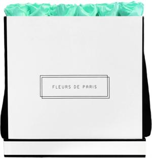 Infinity Collection Minty Green Luxe white - square