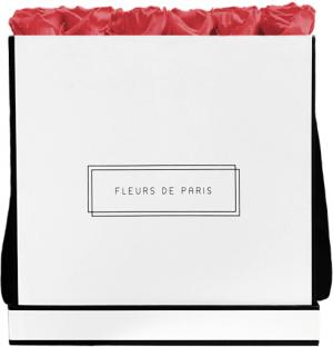 Infinity Collection Pink Framboise Luxe white - square