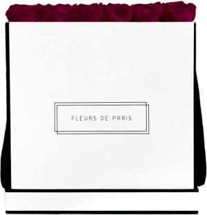 Infinity Collection Velvet Plum Luxe white - square