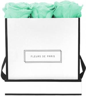 Infinity Collection Minty Green Medium white - square