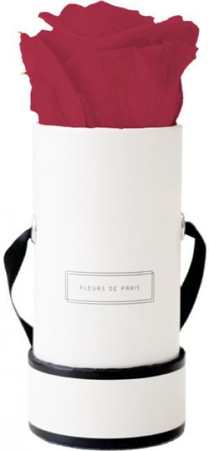 Infinity Collection Pink Framboise Mini white - round
