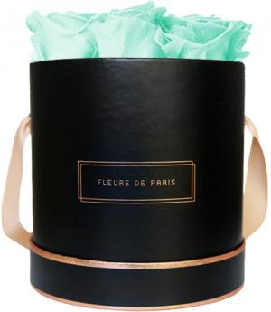 The Rosé Gold Collection Minty Green Medium black - round