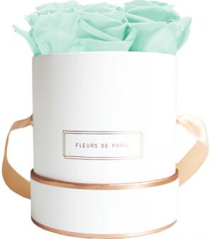 The Rosé Gold Collection Minty Green Small white - round