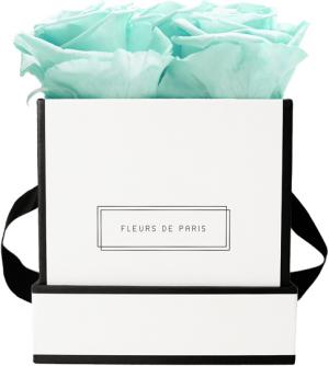 Infinity Collection Minty Green Small white - square