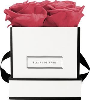 Infinity Collection Pink Framboise Small white - square